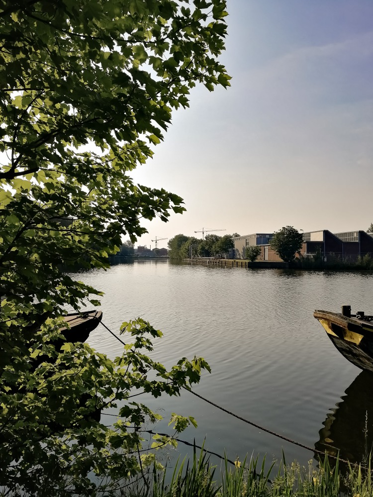 Image shows a calm inlet of the River Ij in Amsterdam.
