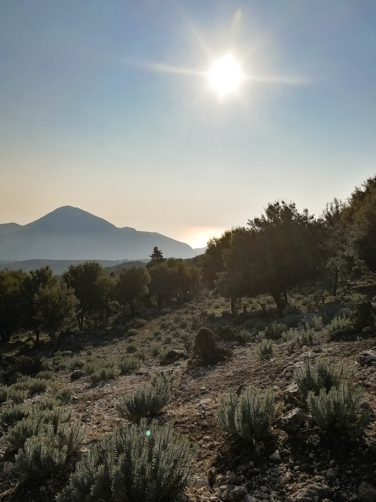 Image shows the view from the trail hiking Mount Ainos in Kefalonia